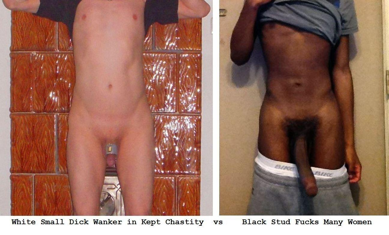 best of White cock and comparisons Black