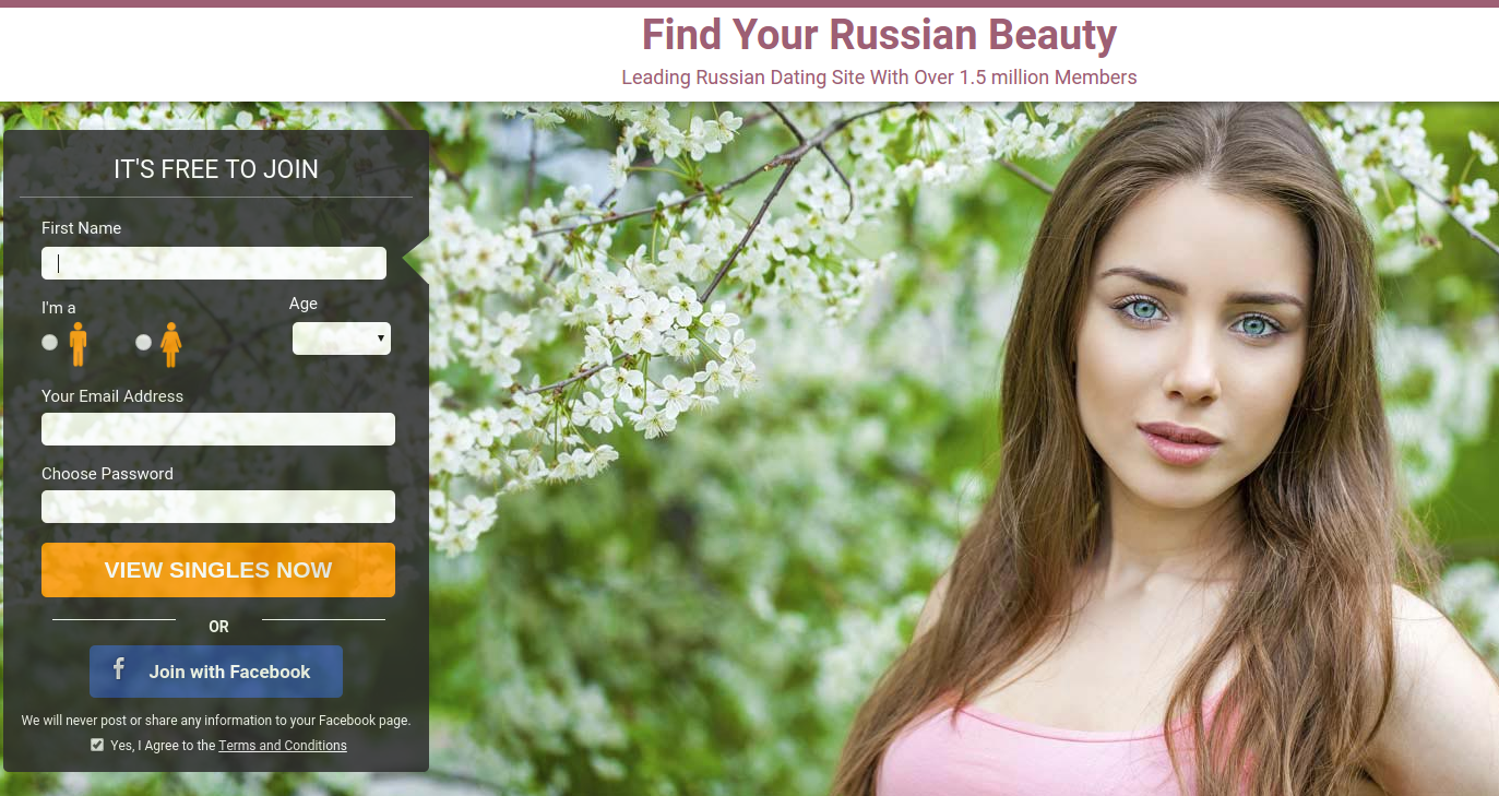 Russian dating niche has seen