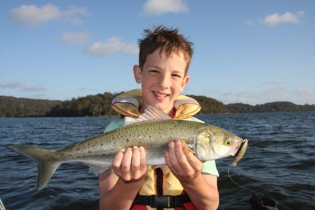 Bush red fish striped bass