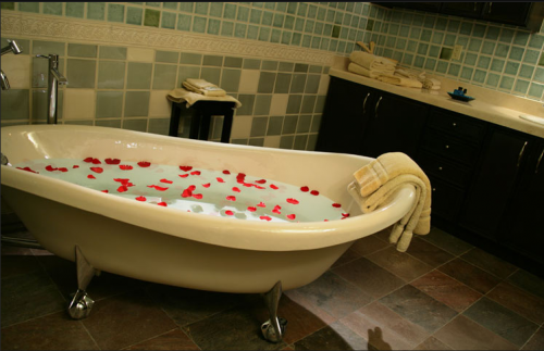 French hotel indiana lick package romantic