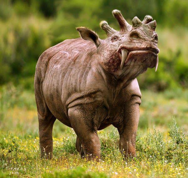 Rooster reccomend Black interracial rhino