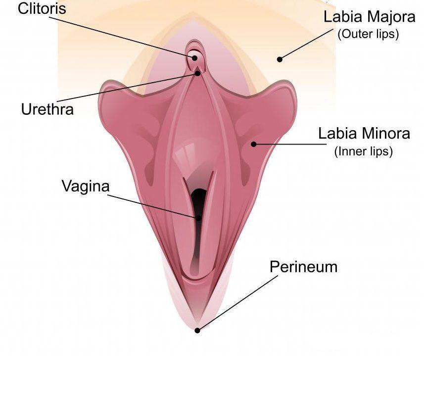 Clitoromegaly and clitoris soreness