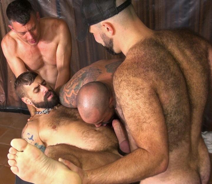 best of Bear Sex hairy sex gay