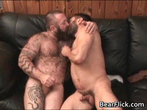 Straight bear sex