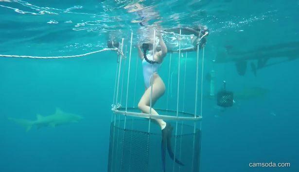 Bentley reccomend Underwater glamor erotic